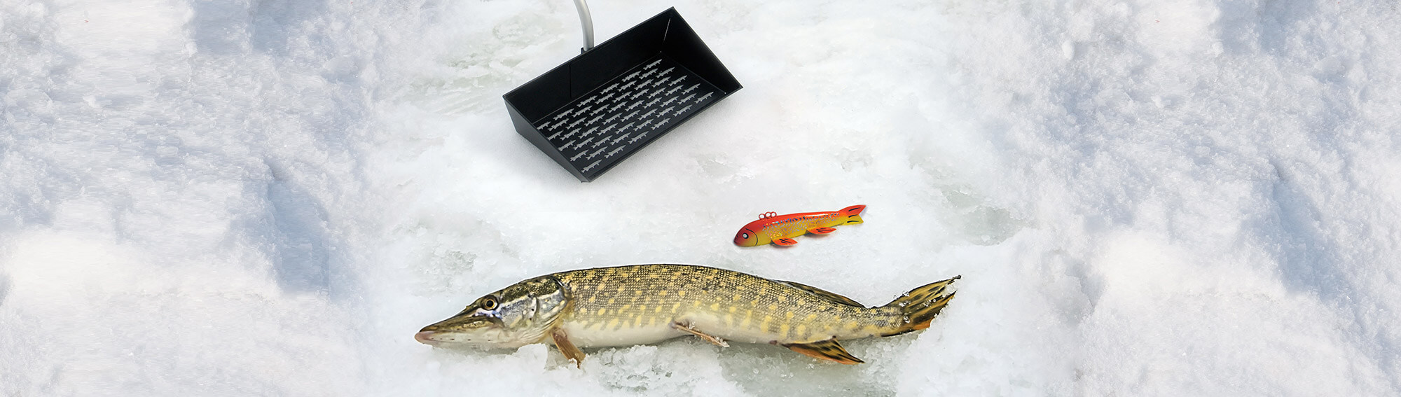 Northern Pike laying on the ice next to a large decoy and a Doty's Darkhouse Dipper